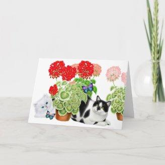 Butterfly Watching Cats Card