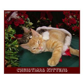 Christmas Cats, Cute Kittens Hugging, Kitty Smile Poster