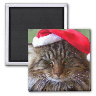 Cranky Christmas Cat Magnet