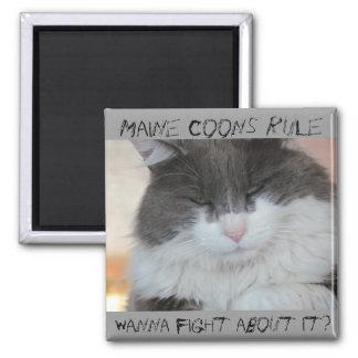 Grumpy Maine Coon Cat Magnet