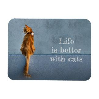 Life Is Better With Cats / Cat Quote Photo Magnet