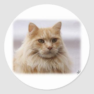 Maine Coon Cat 9Y825D-145 Classic Round Sticker