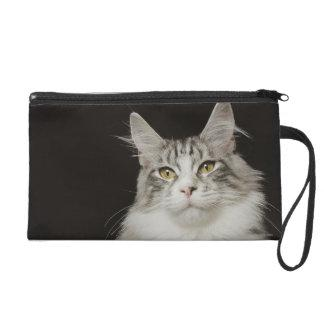 Adult Maine Coon Cat Wristlet Purse