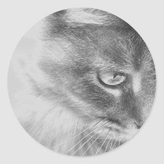 """Angel Kitty"" Portrait Classic Round Sticker"