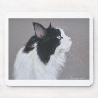 Black and White Maine Coon cat. Mouse Pad