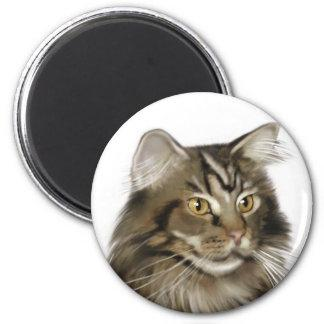 Black Tabby Maine Coon Cat 2 Inch Round Magnet