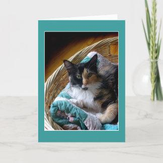 Calico cat in a basket greeting or note card