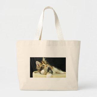 Calico Maine Coon Kitten Plays Large Tote Bag
