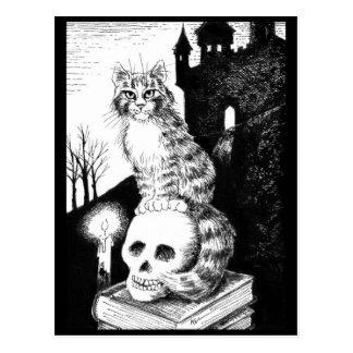 cat black & white Maine Coon Halloween postcard