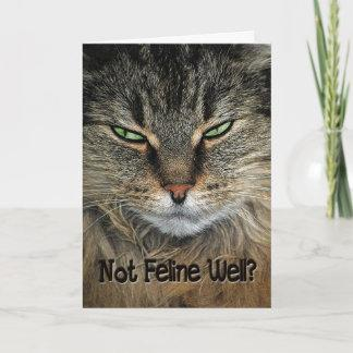 Get Well Cat Card