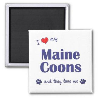 I Love My Maine Coons (Multiple Cats) Magnet