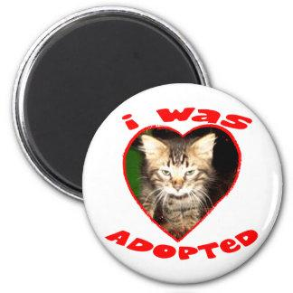 I was Adopted Magnet