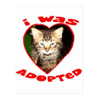 I was Adopted Postcard