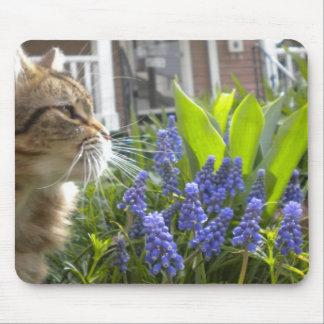 Kitty in Muscari Garden Mouse Pad