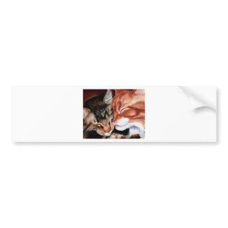 Kitty Kisses Bumper Sticker