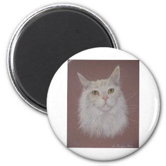 Maine Coon - Ally Magnet
