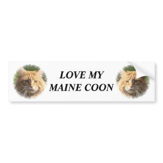 maine coon bumper sticker