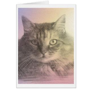 Maine coon Card