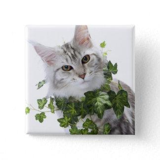 Maine Coon cat and ornament of ivy Pinback Button