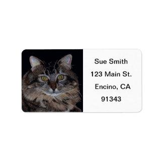 Maine Coon Cat Avery Labels