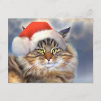 Maine Coon Cat Christmas Portrait Postcard