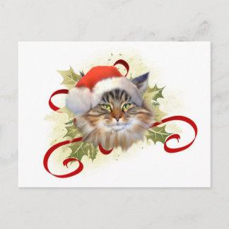 Maine Coon Cat Christmas Postcard