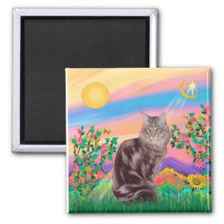 Maine Coon Cat  - Day Star Magnet