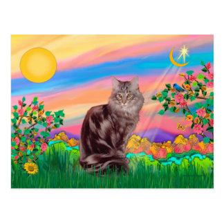 Maine Coon Cat  - Day Star Postcard
