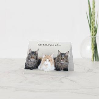 Maine Coon cats cute custom note card