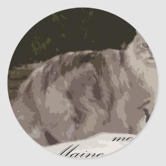 maine coon classic round sticker