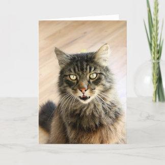 Maine Coon - Cute Purrfect Cat Greeting Card