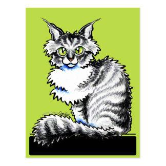 Maine Coon Tabby n White Off-Leash Art™ Postcard