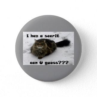 Mischievous Maine Coon in the snow Pinback Button