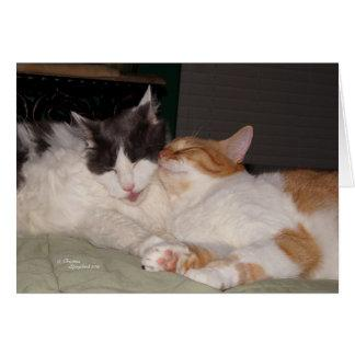 Missing my Friend Cute cats Greeting Card