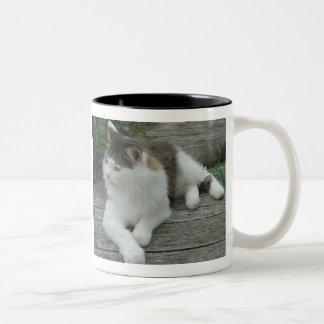 Mug - Maine Coon Cat  Image 1