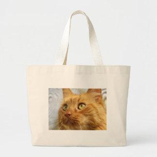 Orange Coon Cat Giant Tote