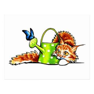 Pretty Stealthy Orange Tabby Maine Coon Postcard
