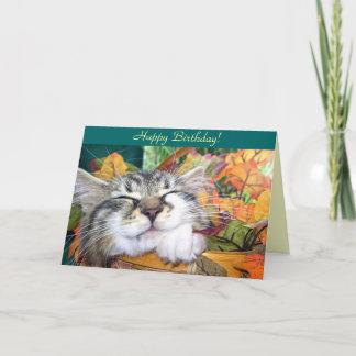 Sleeping Kitty Cat, Maine Coon Kitten, Fall Leaves Card