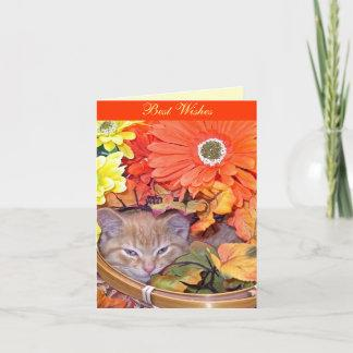 Sleepy Animal, Nature Cat, Flower Basket, Sunlight Card