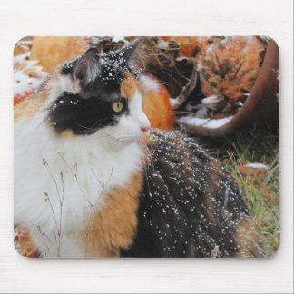 Snowy Calico Cat Mouse Pad