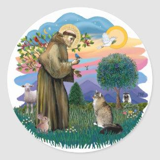St Francis (ff) - Maine Coon cat (tabby) Classic Round Sticker