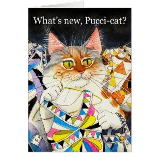 What's new Pucci-cat?
