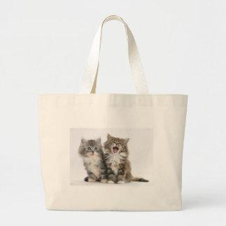 Yawning Maine Coon Kittens Large Tote Bag